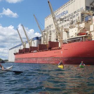 Harbour Kayak Tours